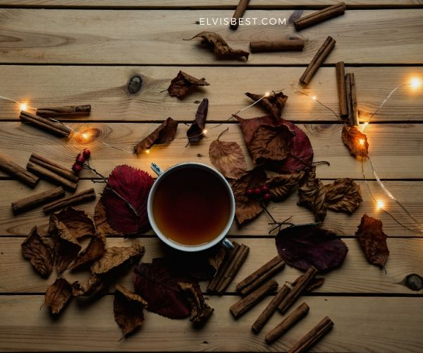 a cup of coffee surrounded by numerous broken short sticks | life-lessons